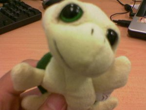 Turtle Toy from Redang